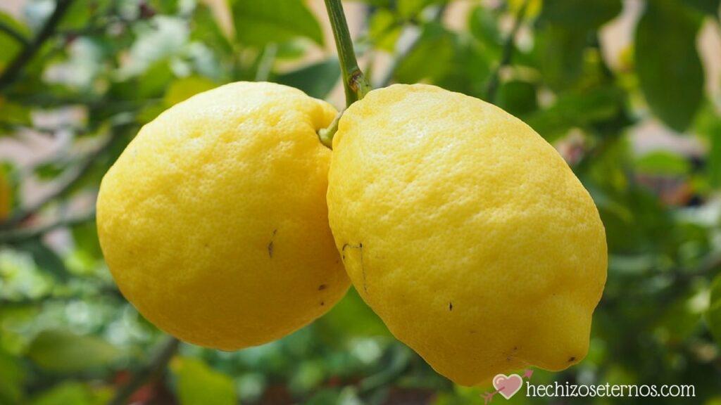 limón para buena vibra